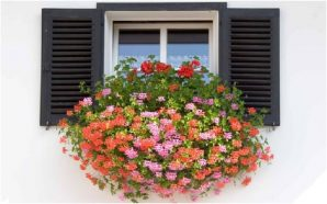 Window box installation