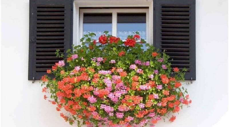 Window box installation